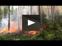 Embedded thumbnail for Pieredzes apmaiņa Somijā - meža zemsedzes kontrolētā dedzināšana